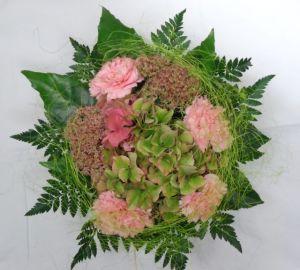 Vihreä hortensia