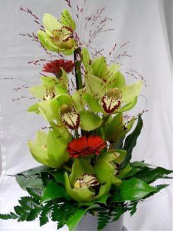Vihreät orkideat