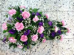 violetti-vaaleanpunainen, neilikat